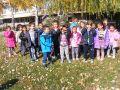 4 - II група - СЛЪНЧИЦЕ - Детска градина Щастливо детство - Твърдица - ДГ Щастливо детство - Твърдица